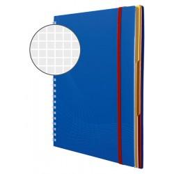 Kołonotatnik Notizio A4 oprawa - tworzywo sztuczne niebieski kratka 90 kartek Avery Zweckform