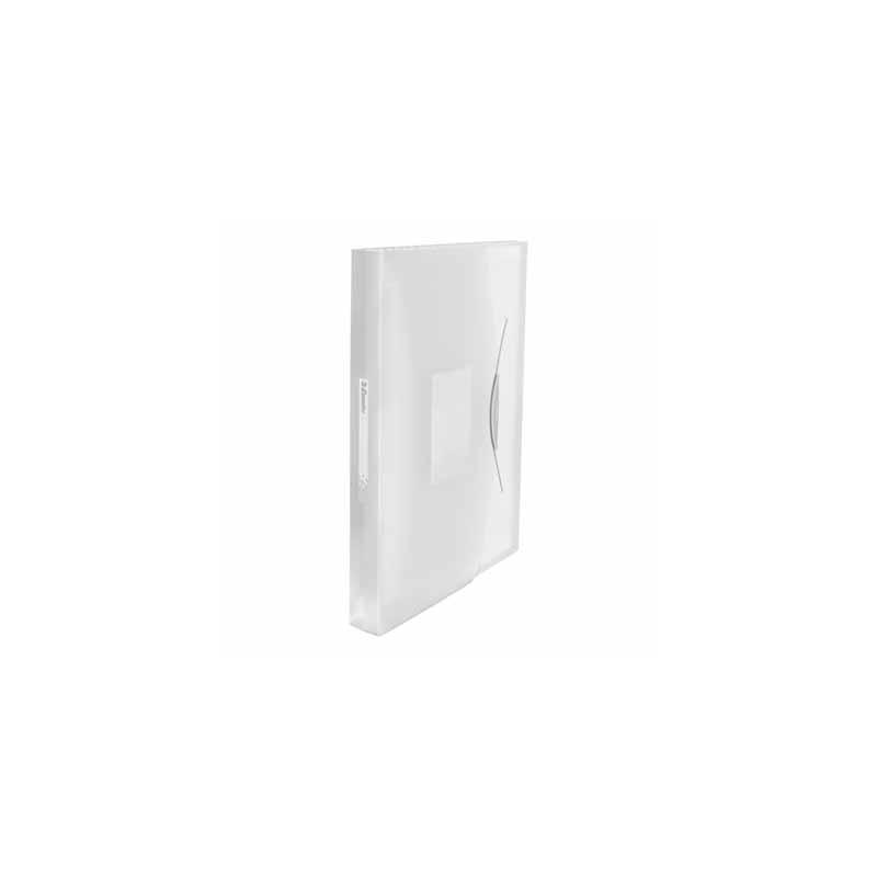 Teczka z przegródkami A4 Esselte Vivida biała