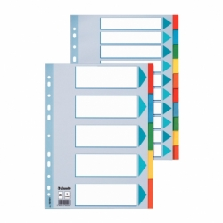 Przekładki kartonowe z kartą opisową A4 Esselte 10 kart.