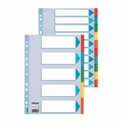 Przekładki kartonowe z kartą opisową A4 Esselte 12 kart.