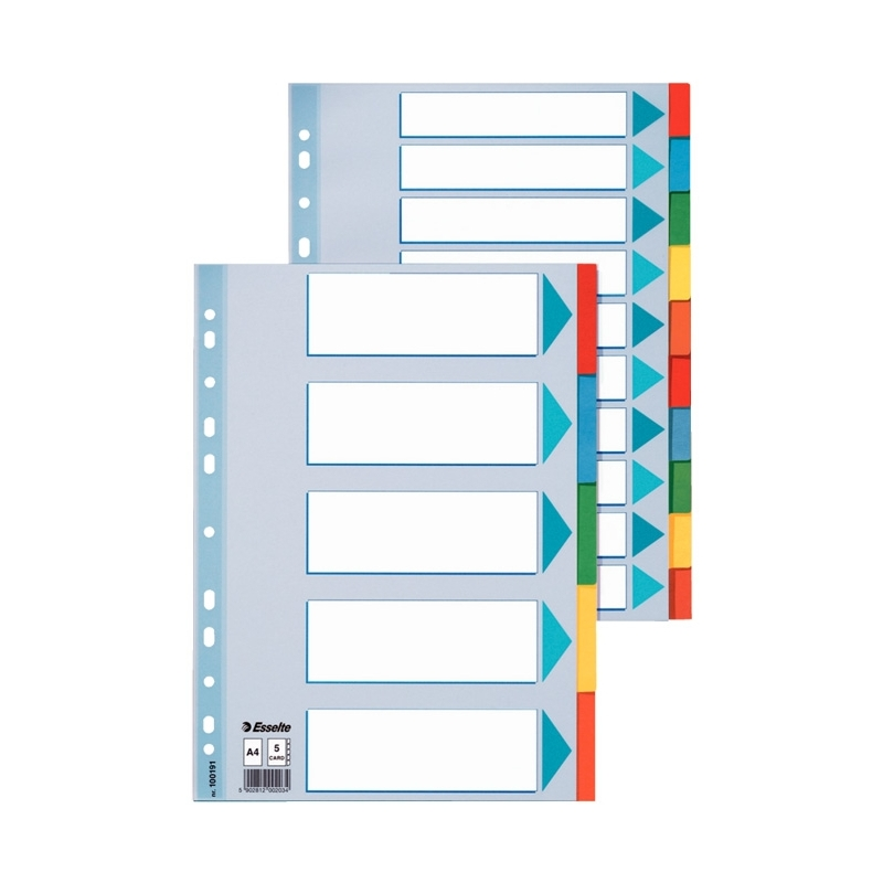 PrzekナBdki kartonowe z kartト� opisowト� A4 Esselte 12 kart.