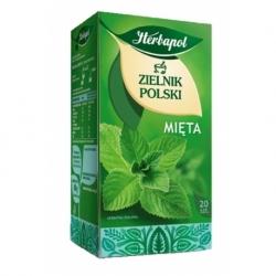 Herbata Herbapol owocowa Mięta 20 szt