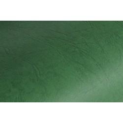 Karton do bindowania skóropodobny Delta A4, 250 g/m?, 100 szt. zielony